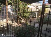 1 otaqlı ev / villa - Nəsimi m. - 120 m² (4)
