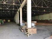 Obyekt - Binəqədi r. - 2500 m² (3)