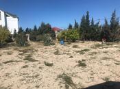 Bağ - Nardaran q. - 280 m² (36)