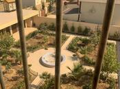 11 otaqlı ev / villa - Türkan q. - 1200 m² (22)