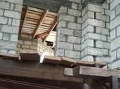 5 otaqlı ev / villa - Qusar - 214 m² (10)