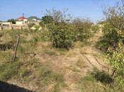 Torpaq - Novxanı q. - 10 sot (2)