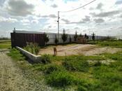 Torpaq - Şirvan - 1000 sot (16)