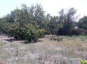 Torpaq - Bərdə - 60 sot (4)