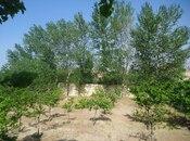 Bağ - Sumqayıt - 205.9 m² (3)