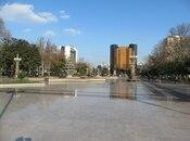 4-комн. новостройка - м. Сахил - 264 м² (4)