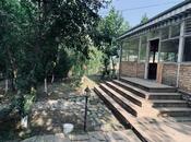 Obyekt - Şabran - 8000 m² (3)