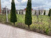 Bağ - Mərdəkan q. - 300 m² (24)