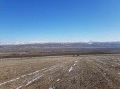 Torpaq - Şamaxı - 1700 sot (12)