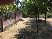 Torpaq - Zaqatala - 1500 sot (19)
