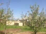 Torpaq - Şamaxı - 10 sot (7)