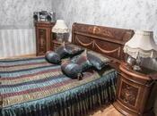 3 otaqlı köhnə tikili - Nəsimi r. - 82 m² (5)