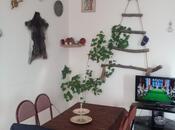 10 otaqlı ev / villa - Qəbələ - 300 m² (17)