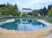 Bağ - Abşeron r. - 3500 m² (9)