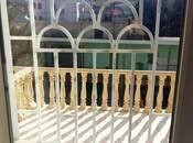 6 otaqlı ev / villa - Badamdar q. - 273 m² (18)