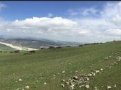 Torpaq - Şamaxı - 25 sot (3)