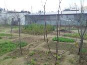 Дача - пос. Нардаран - 240 м² (4)