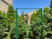 Bağ - Mərdəkan q. - 800 m² (8)