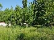 6 otaqlı ev / villa - Qəbələ - 250 m² (4)