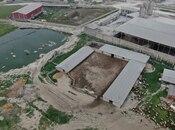 Obyekt - Novxanı q. - 3000 m² (6)