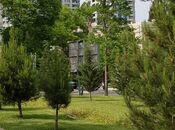 2-комн. новостройка - Насиминский  р. - 109 м² (14)