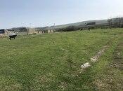 Torpaq - Şabran - 12 sot (4)
