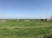 Torpaq - Şabran - 12 sot (6)