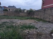 Torpaq - Badamdar q. - 8.4 sot (3)