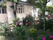 4 otaqlı ev / villa - Oğuz - 110 m² (6)