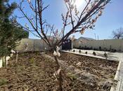 Bağ - Novxanı q. - 200 m² (26)