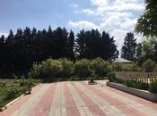 Bağ - Novxanı q. - 300 m² (4)