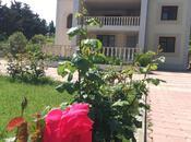 Bağ - Novxanı q. - 300 m² (13)