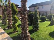 Bağ - Şüvəlan q. - 550 m² (12)