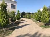 Bağ - Abşeron r. - 300 m² (24)