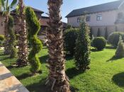 Bağ - Şüvəlan q. - 550 m² (13)