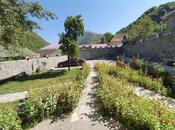 5 otaqlı ev / villa - Qax - 200 m² (3)
