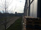 Obyekt - Saatlı - 2864.5 m² (9)