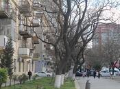7 otaqlı ofis - Nəriman Nərimanov m. - 170 m² (17)