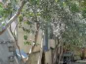 9 otaqlı ev / villa - 7-ci mikrorayon q. - 300 m² (21)