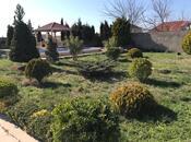 Bağ - Nardaran q. - 225 m² (5)