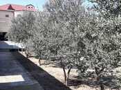 6 otaqlı ev / villa - Nardaran q. - 380 m² (12)