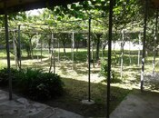 3 otaqlı ev / villa - Qax - 100 m² (9)