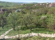 8 otaqlı ev / villa - Şamaxı - 400 m² (13)