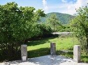 5 otaqlı ev / villa - Zaqatala - 250 m² (12)
