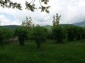3 otaqlı ev / villa - Qəbələ - 90 m² (4)