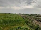 Torpaq - Salyan - 630 sot (3)