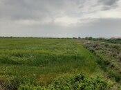 Torpaq - Salyan - 630 sot (4)
