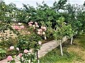4 otaqlı ev / villa - Quba - 280 m² (28)