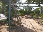 Bağ - Qala q. - 215 m² (14)