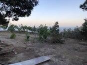 Torpaq - Badamdar q. - 4.5 sot (5)